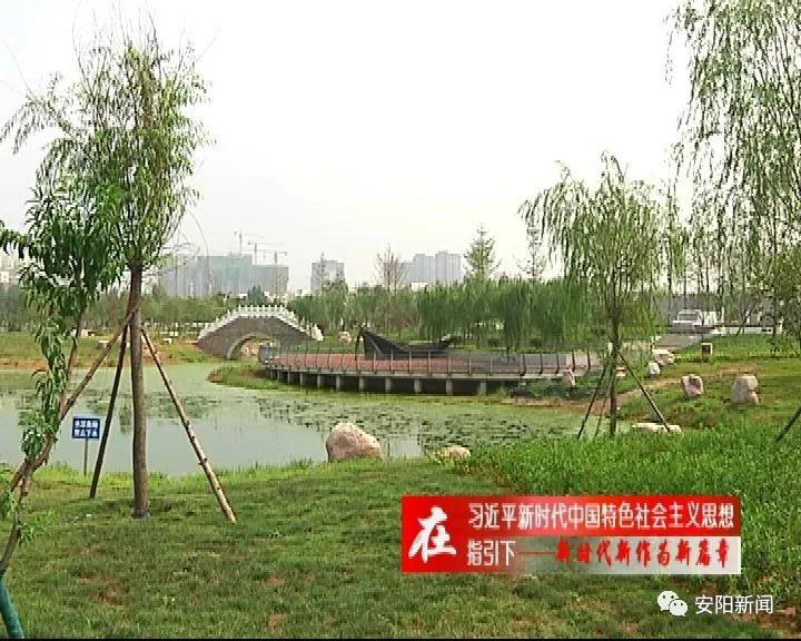 我市新增踏青游园好去处 龙安公园9月上旬全面开园
